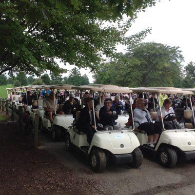 Golf carts 2016